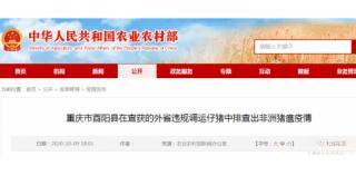 重庆从查获的外省违规调运仔猪中排查出非洲猪瘟疫情