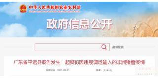 广东平远发生一起非瘟疫情,疑似因违规调运输入