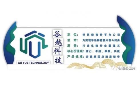 <b>谷越科技春节放假通知</b>