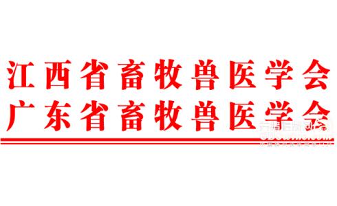 <b>2021赣粤畜牧业高峰论坛(第一轮通知)</b>