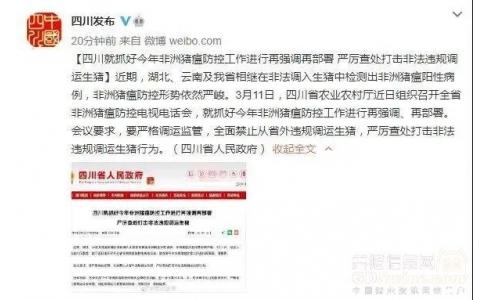 四川、湖南全面禁止从省外违规调运生猪!山东开展为期3个月的生猪违规调运打击行动!