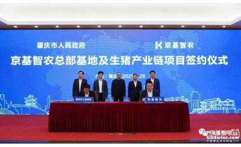 <b>京基智农肇庆市生猪产业链项目启动 将打造现代农业和食品产业示范园区</b>