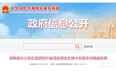 湖南省在查获的外省违规调运生猪中发现非洲猪瘟疫情