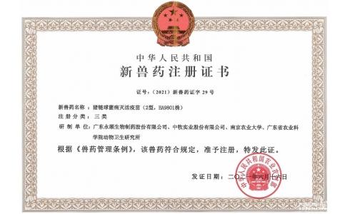 我国猪链球菌防控再添利器!永顺生物猪链球菌灭活疫苗获得新兽药注册证书