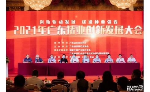 <b>广东猪业创新发展大会隆重召开:建设种业强省,再创广东生猪产业新辉煌</b>