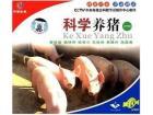 科学养猪1(VCD)