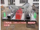 养猪设备厂家直销 母猪产床价格 猪用分娩栏尺寸一套猪产仔栏多少钱